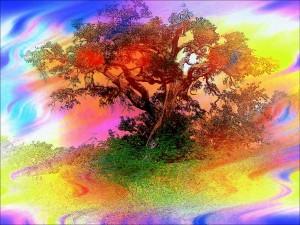 trees-83487_1280
